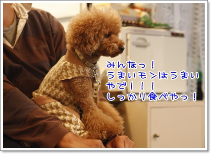 n_20091130001922.jpg