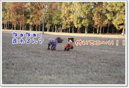 o_20091108224510.jpg