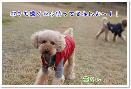 o_20091129224557.jpg
