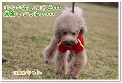 p_20091129224556.jpg