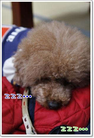 s_20091124193524.jpg