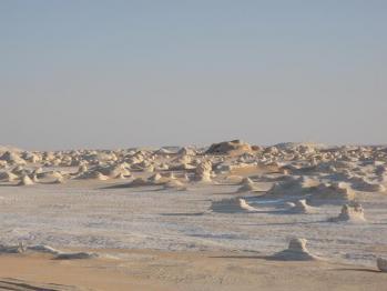 砂漠の白いぼこぼこ
