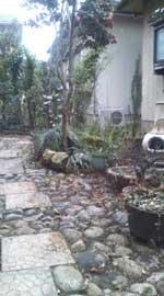 タウンハウスの庭2