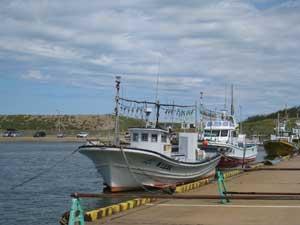 新川漁港2