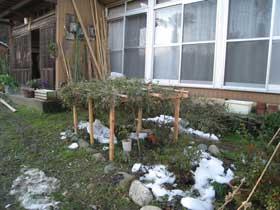 雪のカントリーハウス3