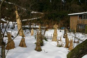 雪のカントリーハウス