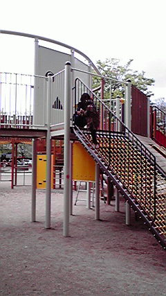 大垣公園 (1)