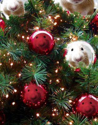 日記12・24クリスマス合成