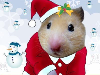 日記12・26クリスマス1