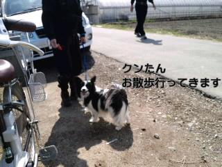 いちごよりお散歩!