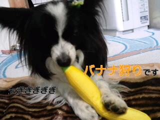 もぎもおぎバナナ。