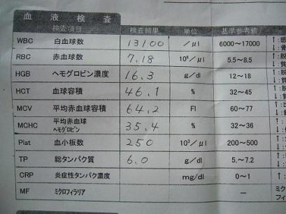 P1050539.jpg