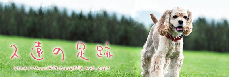 ありがとぉ(o^∇^o)ノ