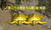 20110705-1.jpg