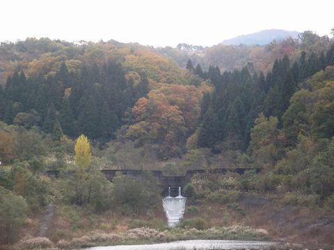 kouyou1119-1.jpg