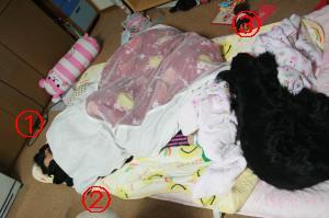 IMG_8645_convert_20110523103141.jpg