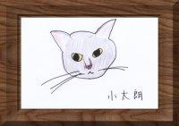 Mkami_gahaku_2.jpg