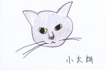 Mkami_gahaku.jpg