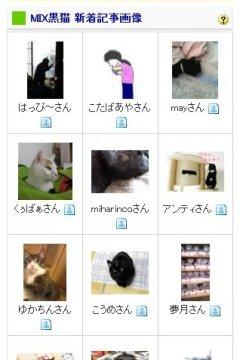 blogmura_R.jpg
