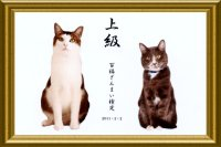 kentei_goukaku_2.jpg