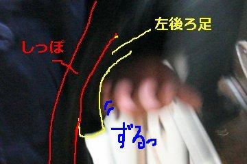 kota2104R.jpg
