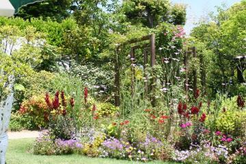 open_garden_3.jpg