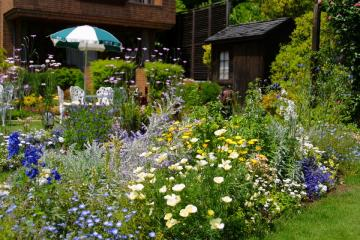 open_garden_4.jpg