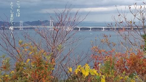 鳴門大橋です