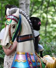 白馬の王子さま?