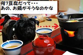 豆腐かな~
