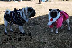てんちゃん&カン太くん