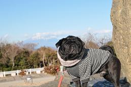 りきと富士山