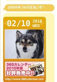 2009年365日カレンダー