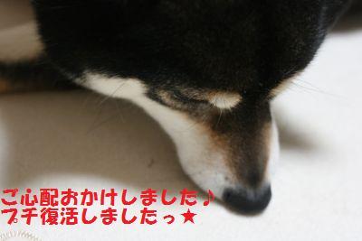 IMG_1095.jpg