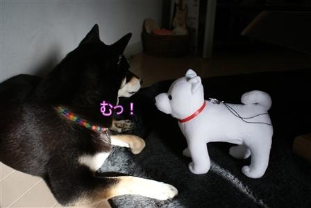 DSC09167_Rく