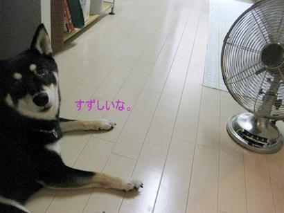 IMG_1948_Rく