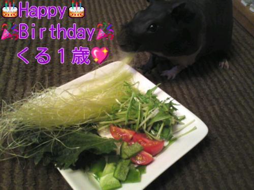 y_birthday1.jpg