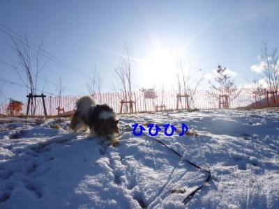 20091222-4.jpg