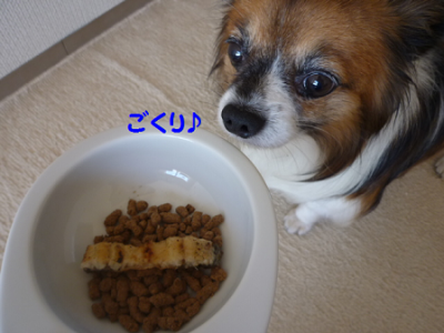 20101012-8.png