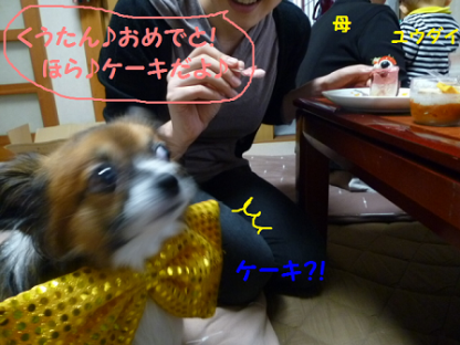 20101015-2.png