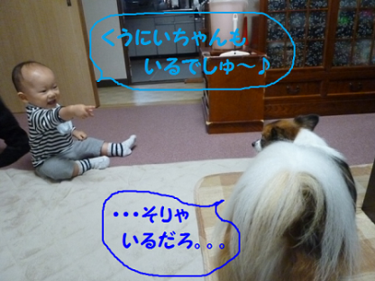 20101018-2.png