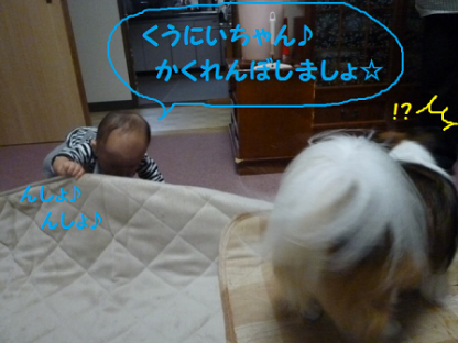 20101018-3.png