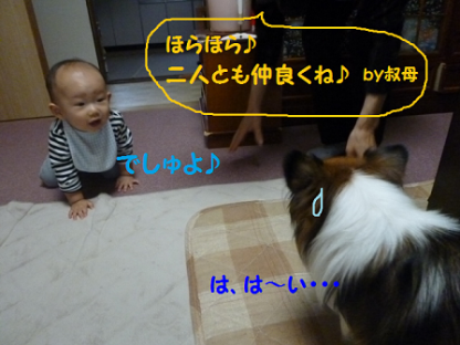 20101018-5.png