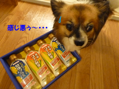 2010102-3.png