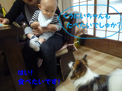 20101022-2.png