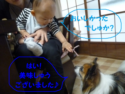 20101022-4.png