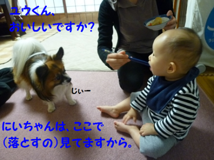 20101022-8.png