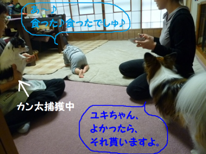 20101022-9.png