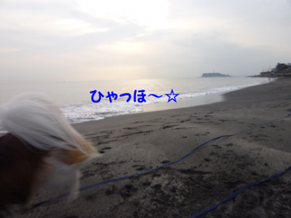 20101024-9.png