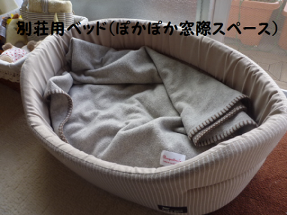 20101028-7.png